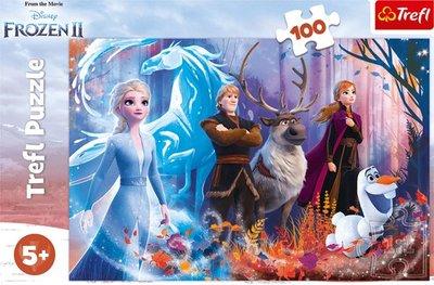 Disney Frozen puzzel