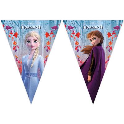 Disney Frozen vlaggenlijn